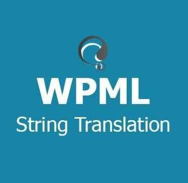افزونه چند زبانه کردن سایت | WPML Multilingual CMS